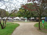 バーベキュー広場の写真