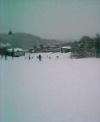 札幌国際スキー場に来ています