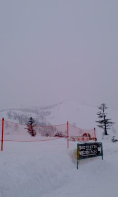 かぐら雪が降って来ました。